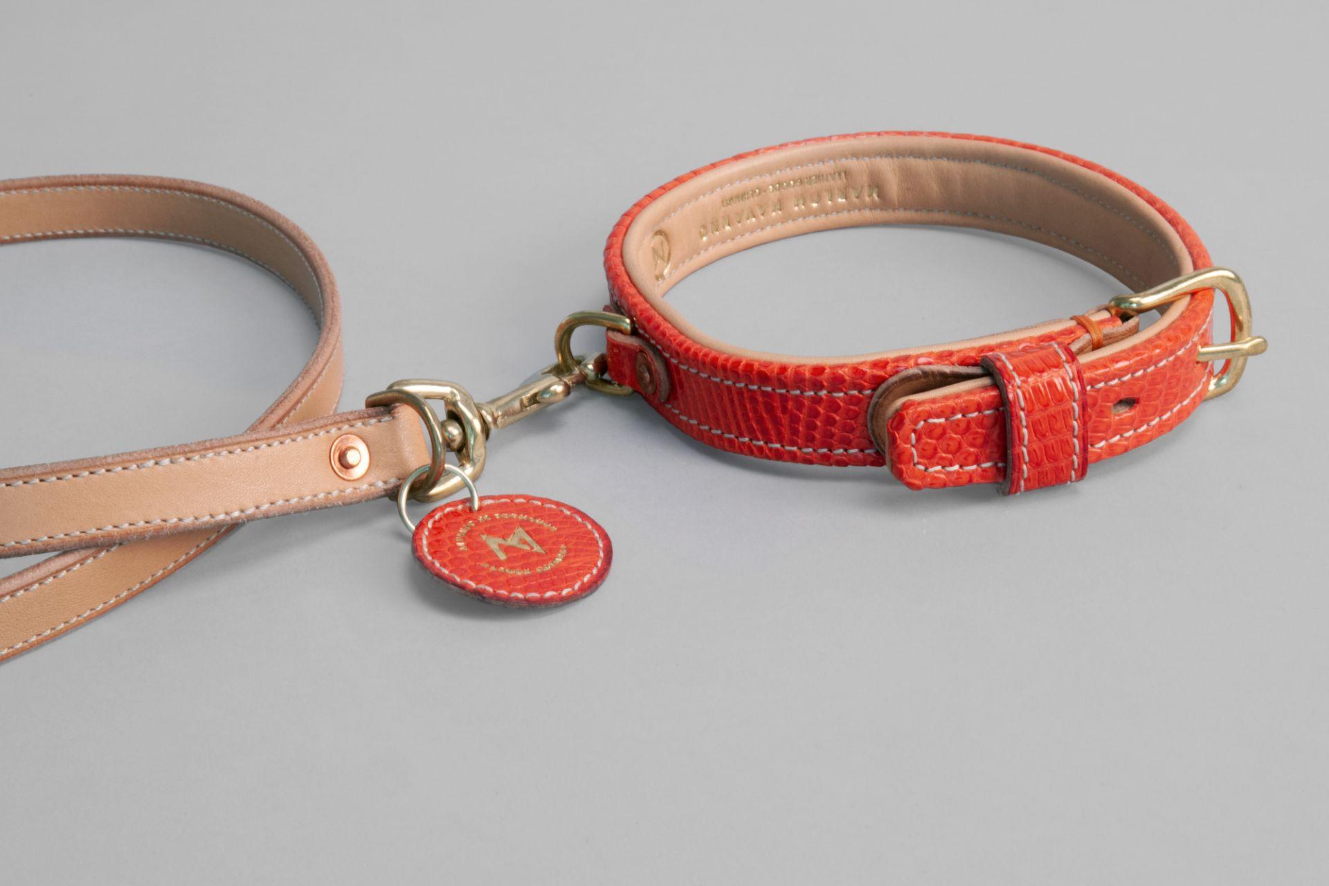 Dog collar and lead, MARLON NAVARRO Leather Goods, Offenbach/Main, 2020