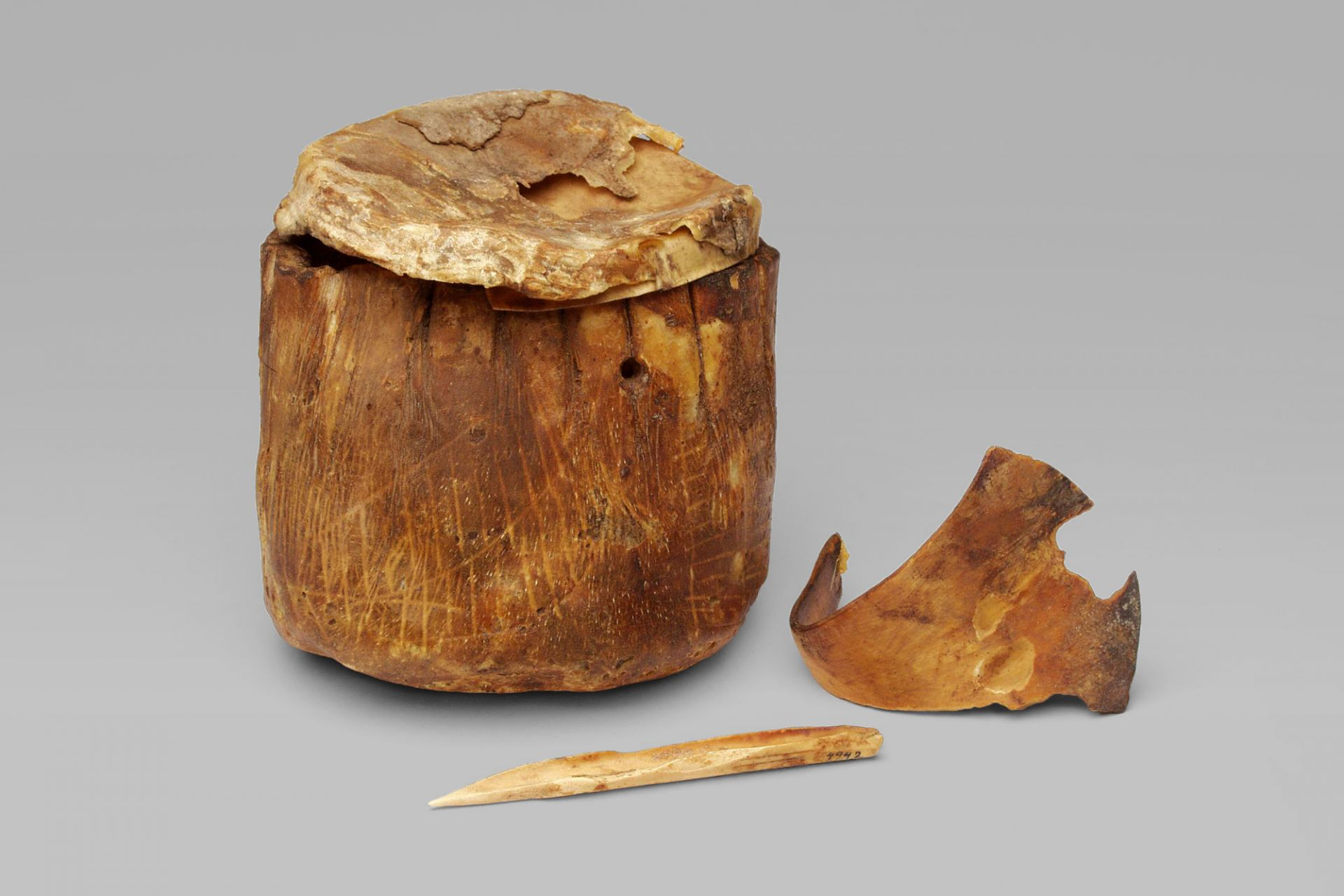 Rawhide vessel with incised drawing and bone tools, Egypt, 4th millennium BCE