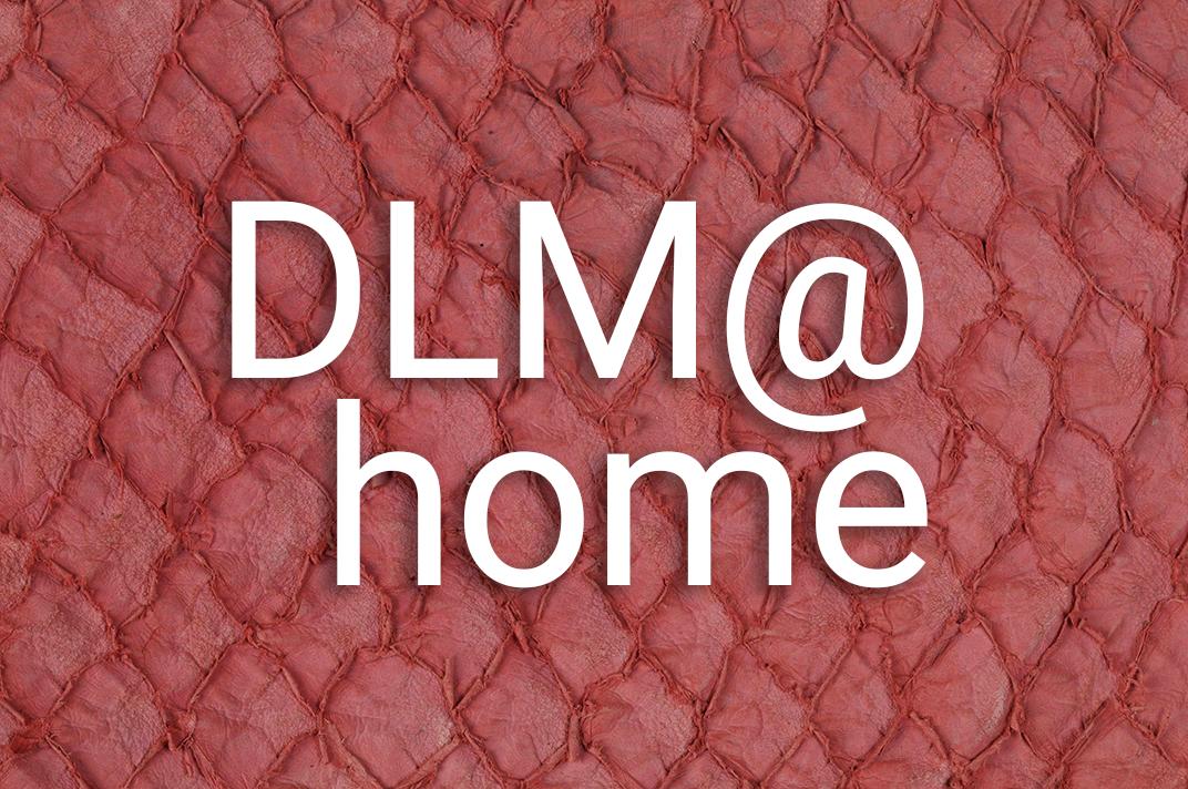 fischleder_dlm_at_home_zy.png